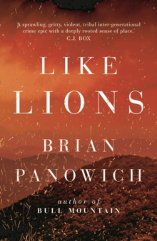 Like Lions, Paperback / softback Book