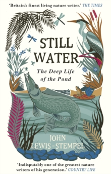 Still Water : The Deep Life of the Pond, Paperback / softback Book