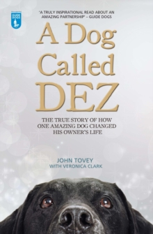 A Dog Called Dez : The true story of how one amazing dog changed his owner's life, Paperback / softback Book