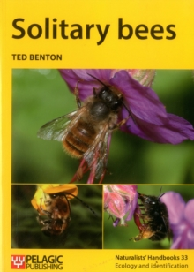 Solitary bees, Paperback / softback Book
