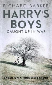 Harry's Boys, Paperback Book