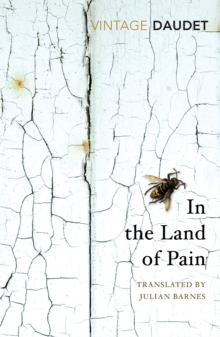 In the Land of Pain, Paperback / softback Book