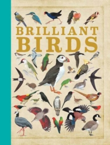 Brilliant Birds, Hardback Book