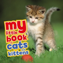 My Little Book of Cats and Kittens, Hardback Book