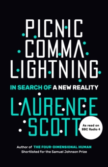 Picnic Comma Lightning : In Search of a New Reality, Hardback Book