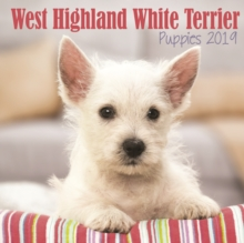 West Highland White Terrier Puppies M 2019, Paperback Book
