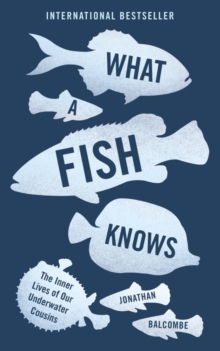 What a Fish Knows : The Inner Lives of Our Underwater Cousins, Paperback Book