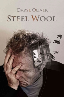 Steel Wool, Paperback Book