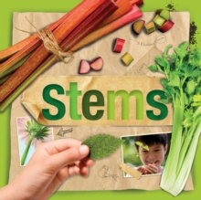 Stems, Hardback Book