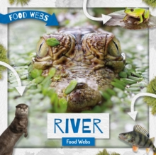 River Food Webs, Hardback Book