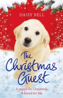 The Christmas Guest : A heartwarming tale to curl up with by the fire, Paperback / softback Book