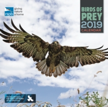 RSPB Birds of Prey W 2019, Paperback Book