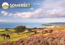 Somerset A4 2019, Paperback Book