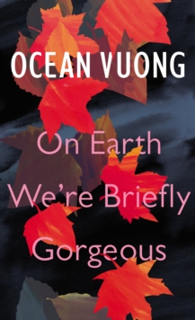 On Earth We're Briefly Gorgeous, Hardback Book
