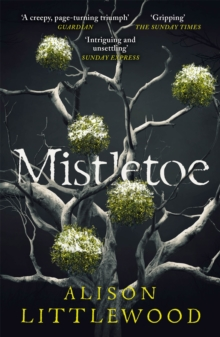 Mistletoe : 'The perfect read for frosty nights' HEAT, Paperback / softback Book