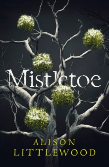 Mistletoe : 'The perfect read for frosty nights' HEAT, EPUB eBook