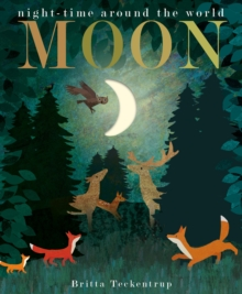 Moon : night-time around the world, Board book Book