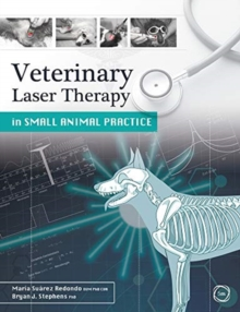 Veterinary Laser Therapy in Small Animal Practice, Paperback / softback Book