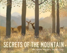Secrets of the Mountain, Paperback / softback Book