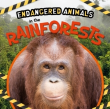 In the Rainforests, Hardback Book