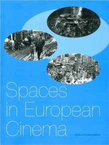 Spaces in European Cinema, Paperback Book