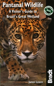 Pantanal Wildlife : A Visitor's Guide to Brazil's Great Wetland, Paperback / softback Book