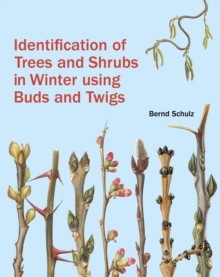 Identification of Trees and Shrubs in Winter Using Buds and Twigs, Hardback Book