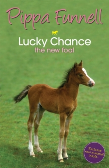 Tilly's Pony Tails: Lucky Chance the New Foal : Book 5, Paperback Book