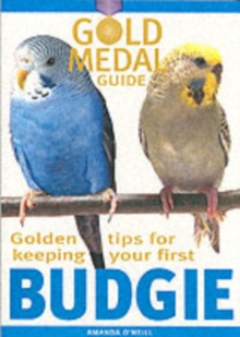 Budgie, Paperback Book