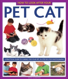 How to Look After Your Pet Cat, Hardback Book