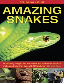 Exploring Nature: Amazing Snakes : an Exciting Insight into the Weird and Wonderful World of Snakes and How They Live, with 190 Pictures, Hardback Book