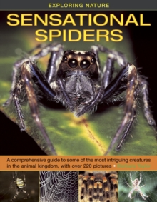 Exploring Nature : Sensational Spiders: A Comprehensive Guide to Some of the Most Intriguing Creatures in the Animal Kingdom, with Over 220 Pictures, Hardback Book