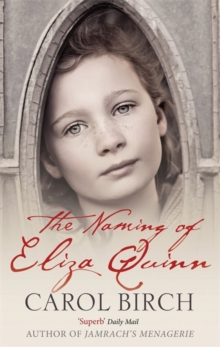 The Naming of Eliza Quinn, Paperback Book