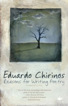 Reasons for Writing Poetry, Paperback Book