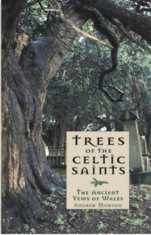Trees of the Celtic Saints   The Ancient Yews of Wales, Paperback Book