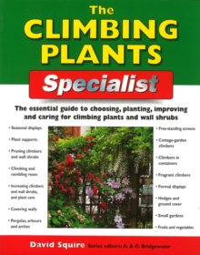The Climbing Plants Specialist, Paperback / softback Book