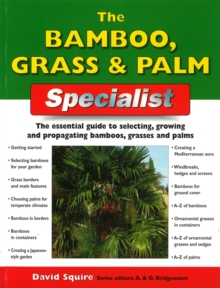 The Bamboo, Grass and Palm Specialist, Paperback Book