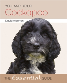 You and Your Cockapoo : The Essential Guide, Paperback Book