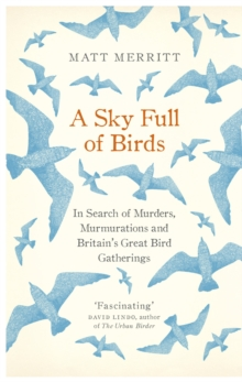 A Sky Full of Birds, Hardback Book