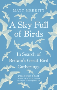 A Sky Full of Birds, Paperback Book