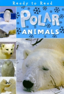 Polar Animals, Paperback Book