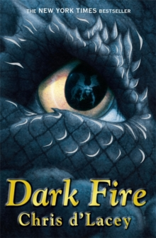 Dark Fire, Paperback Book