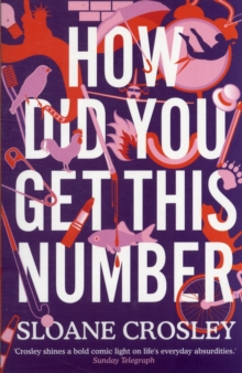 How Did You Get This Number, Paperback Book
