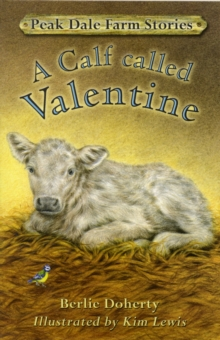Peak Dale Farm Stories : A Calf Called Valentine Bk.1, Paperback Book