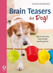 Brain Teasers for Dogs : Quick and easy homemade puzzle games, Paperback / softback Book