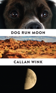 Dog Run Moon : Stories, Paperback Book