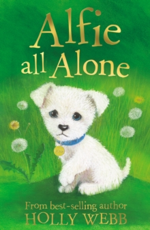 Alfie All Alone, Paperback Book