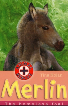 Merlin : The Homeless Foal, Paperback Book