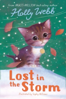 Lost in the Storm, Paperback Book