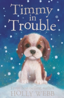 Timmy in Trouble, Paperback Book